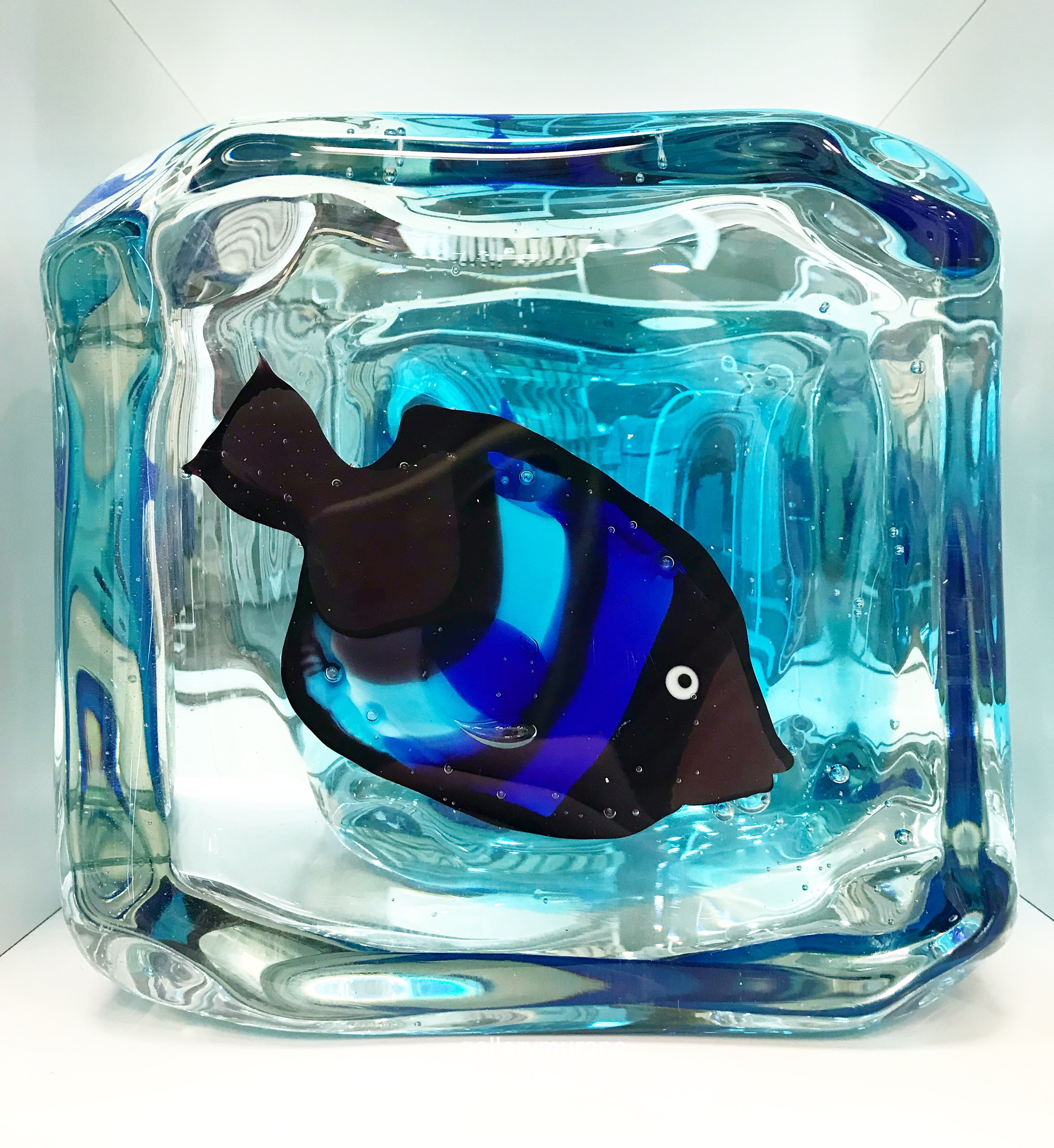 Куб Рыба синяя