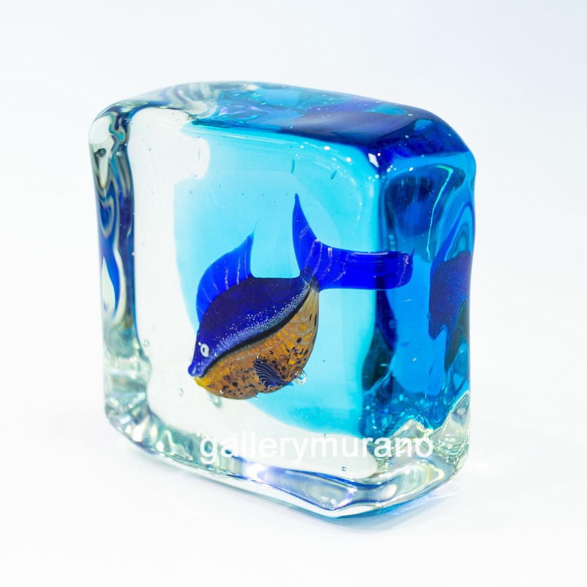 Куб Рыба пестрая